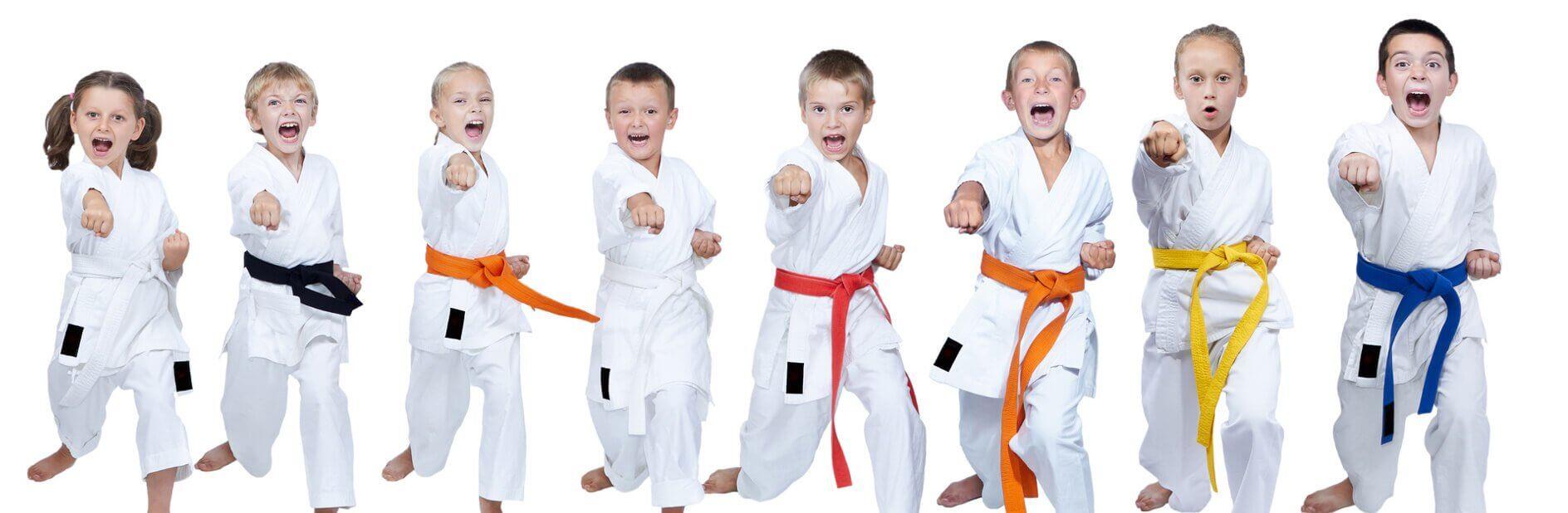Szkoła Karate dla dzieci Warszawa - Młodzi Wojownicy