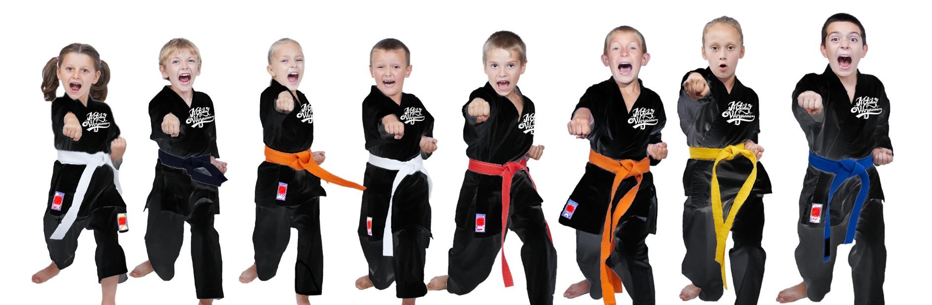 Szkola Karate dla dzieci Warszawa Młodzi Wojownicy